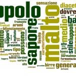 rappresentazione visiva delle parole pesate della descrizione degli stili in italiano di microbirrifici.org